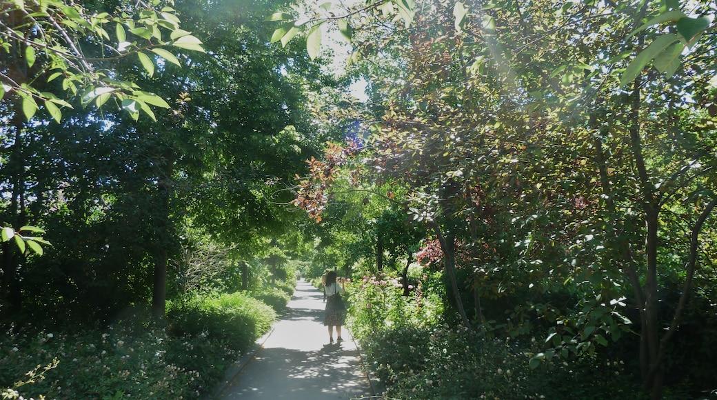 «Neuilly-sur-Seine», photo de Wowo2008 (CC BY-SA) / rognée de l'originale
