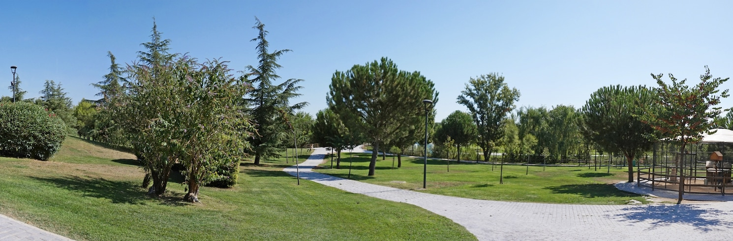 Torrejón de Ardoz, Spanien