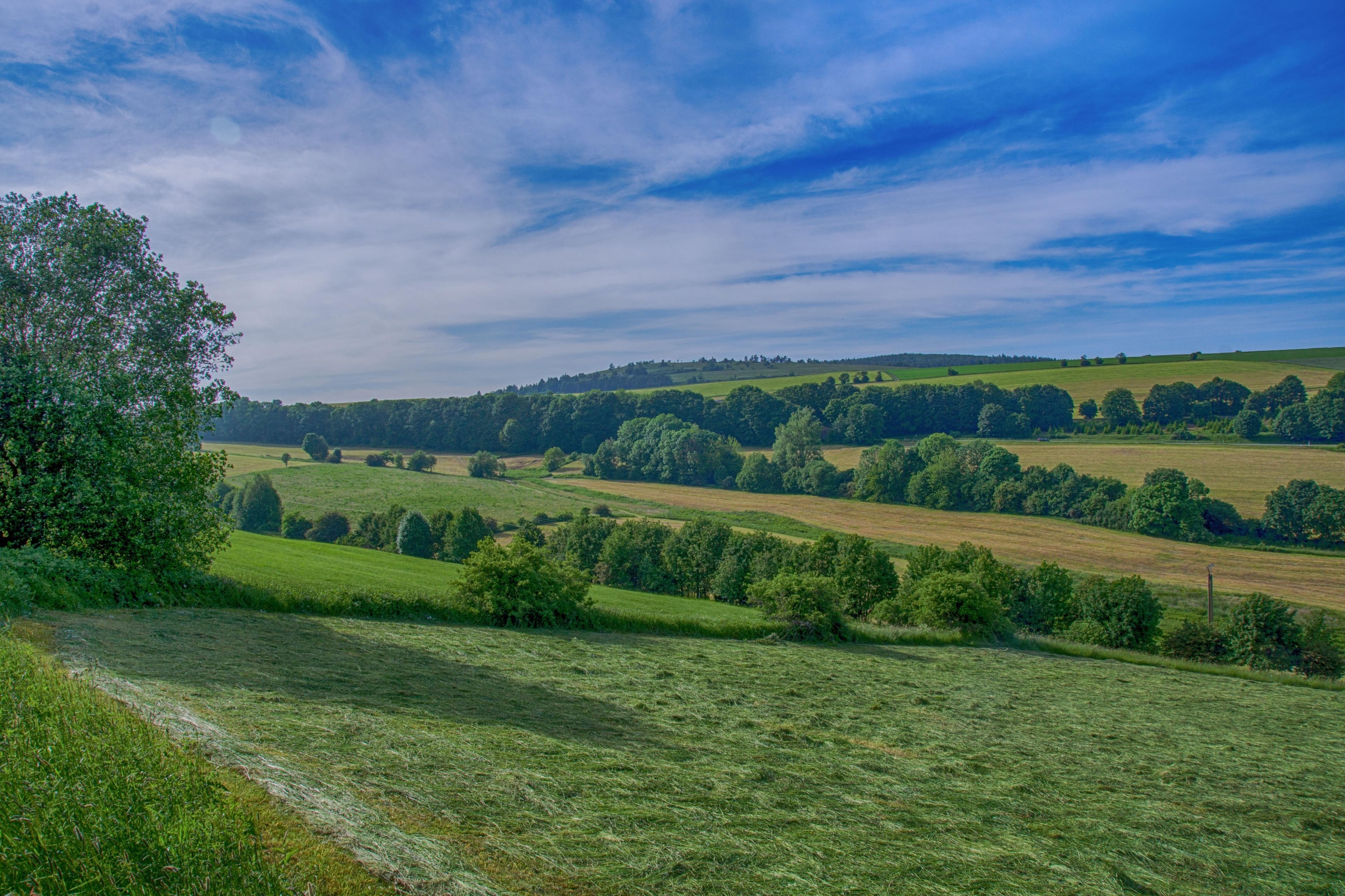 Usseln, Willingen (Upland), Hessen, Deutschland