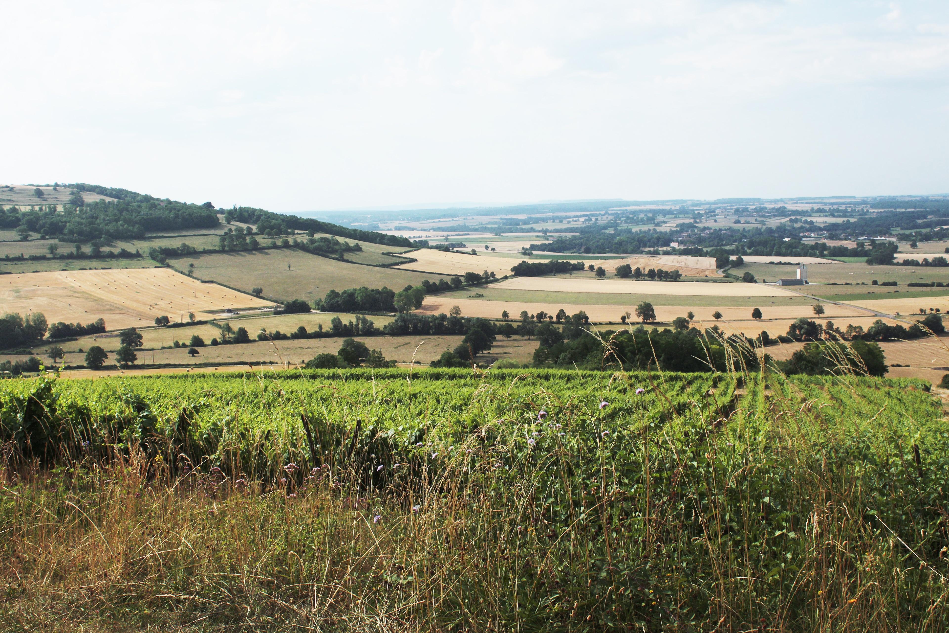 Viserny, Cote d'Or, France