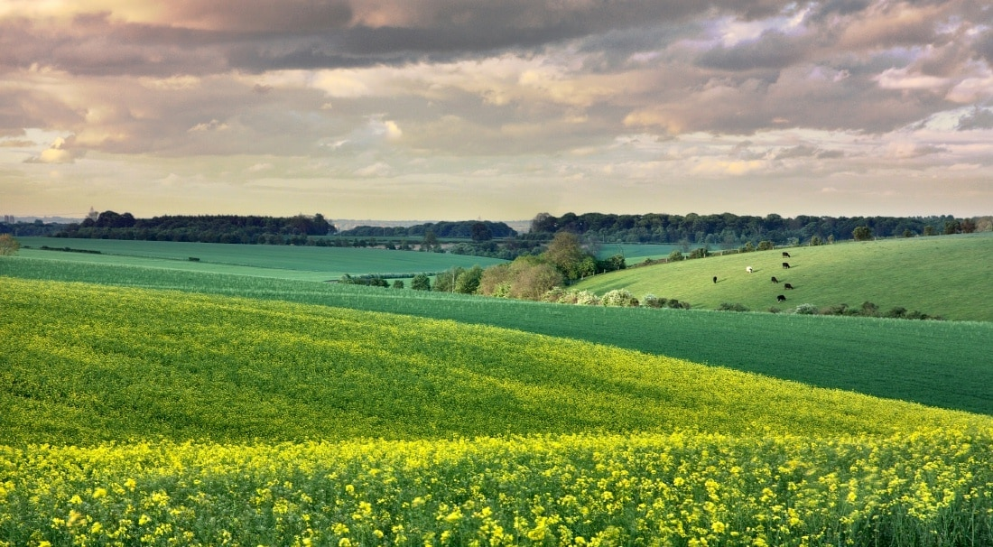 Cottingham, England, United Kingdom