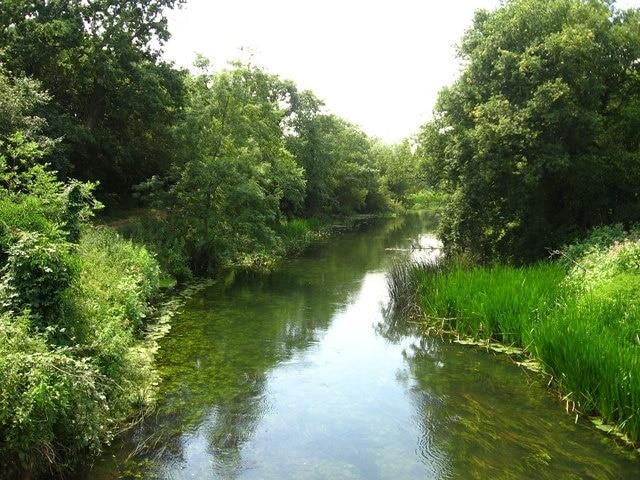 Dinton Pastures Country Park, Reading, Engeland, Verenigd Koninkrijk