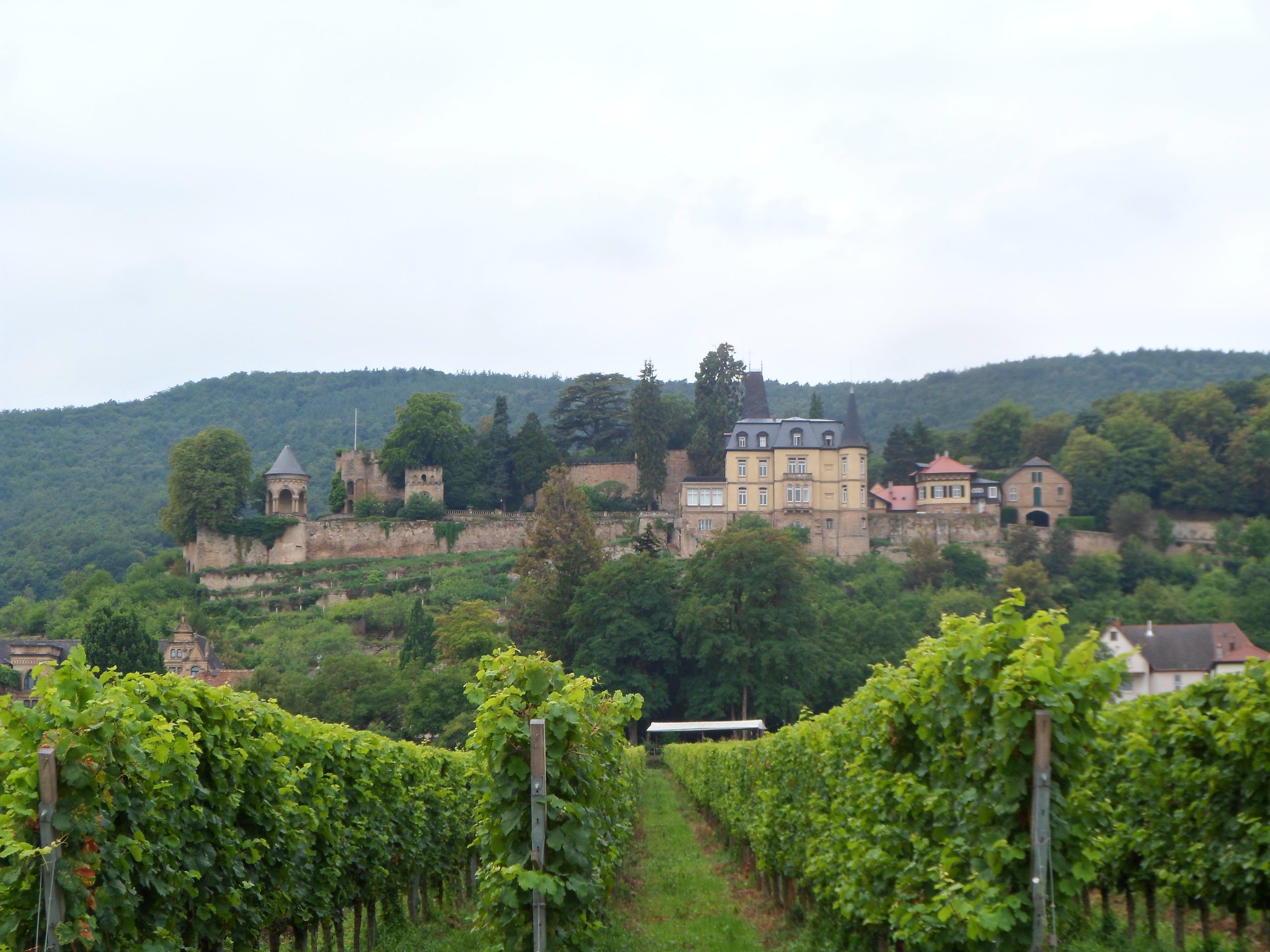 Neustadt-Haardt, Neustadt an der Weinstraße, Rheinland-Pfalz, Deutschland