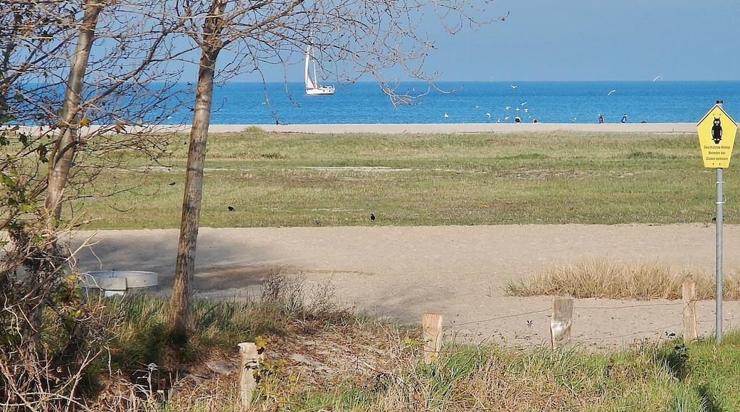 """Foto """"Halbinsel Priwall"""" von qwesy qwesy (CC BY)/zugeschnittenes Original"""
