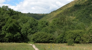 Deep Dale Nature Reserve