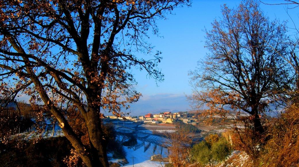 """Foto """"Soave"""" von paolo lanciai (CC BY)/zugeschnittenes Original"""