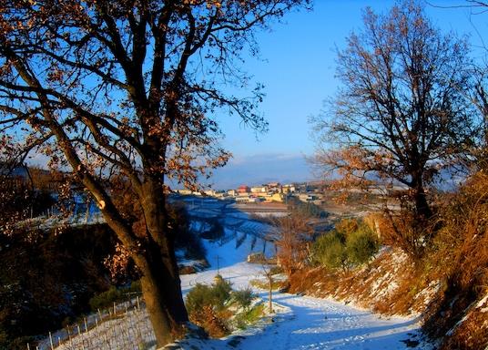 Soave, Taliansko