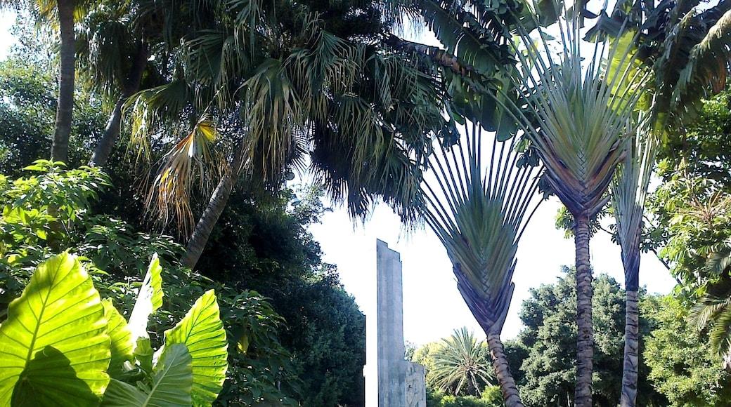 """Foto """"Garcia Sanabria Park"""" von rene boulay (CC BY-SA)/zugeschnittenes Original"""
