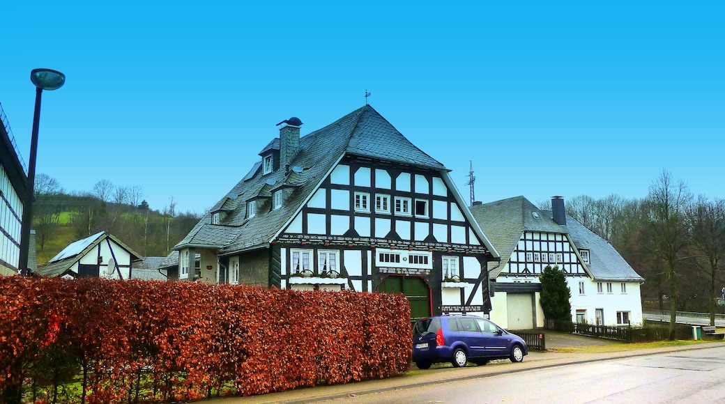 """Foto """"Assinghausen"""" von giggel (CC BY)/zugeschnittenes Original"""
