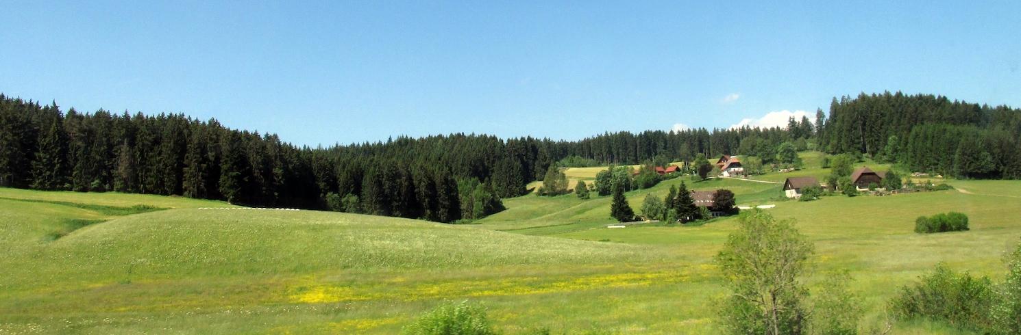聖格奧爾根伊姆斯希瓦爾茨瓦爾德, 德國