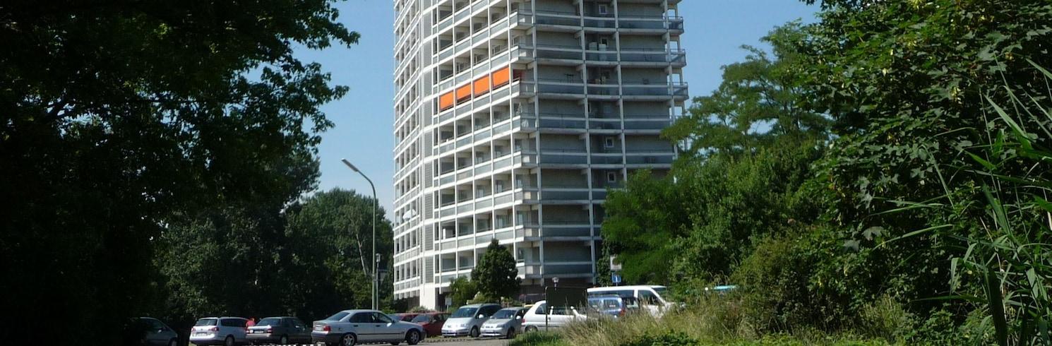 路德維希港-弗里森海姆, 德國