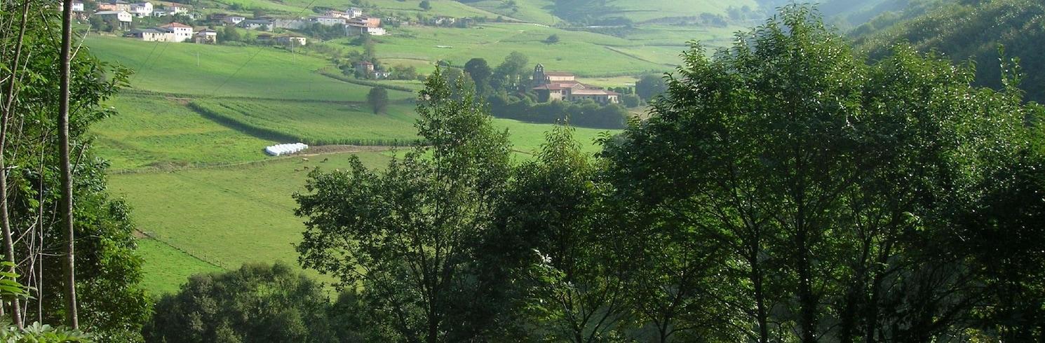 Тинео, Испания