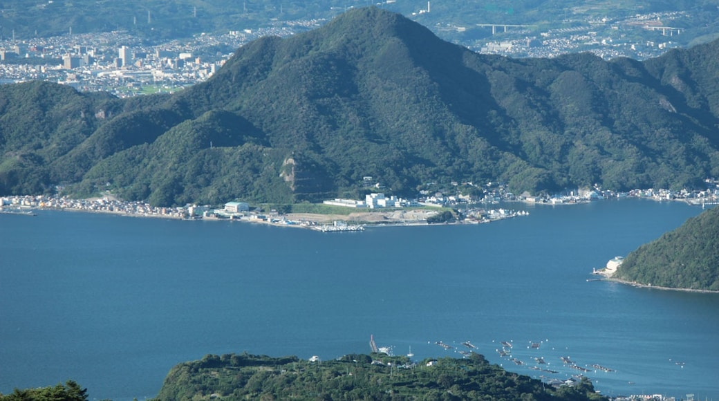 Mount Washizu is located in Numazu city.