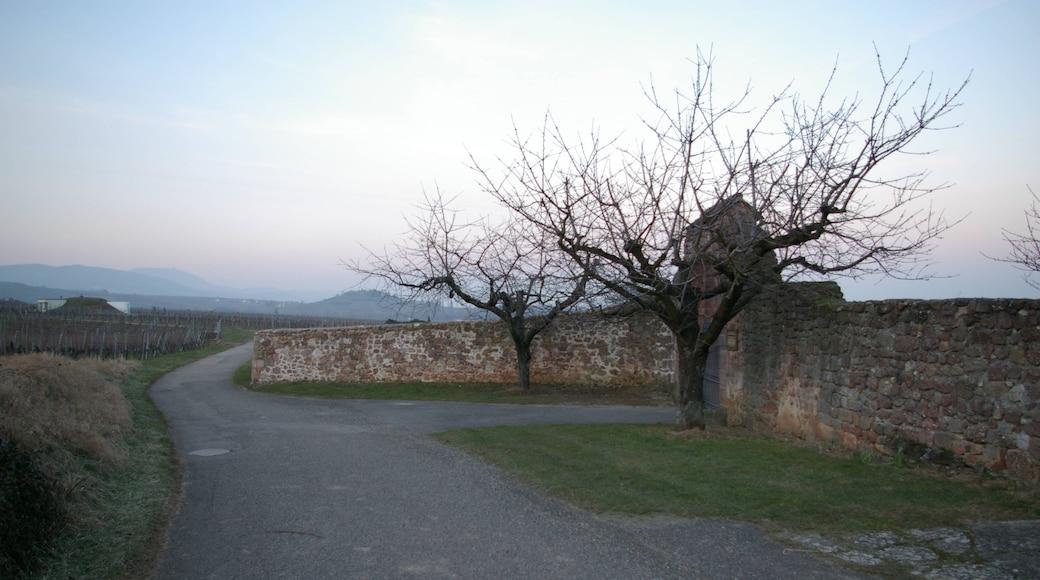«Mittelwihr», photo de Gzen92 (CC BY-SA) / rognée de l'originale