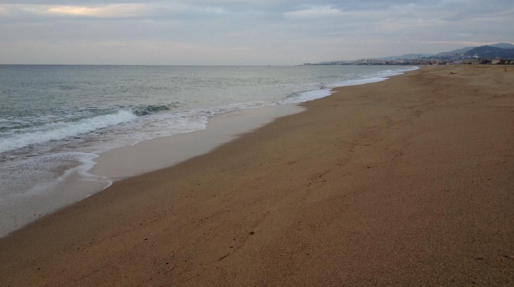 Foto 'Strand van Malgrat de Mar' van Dalibor Z. Chvatal (CC BY) / bijgesneden versie van origineel