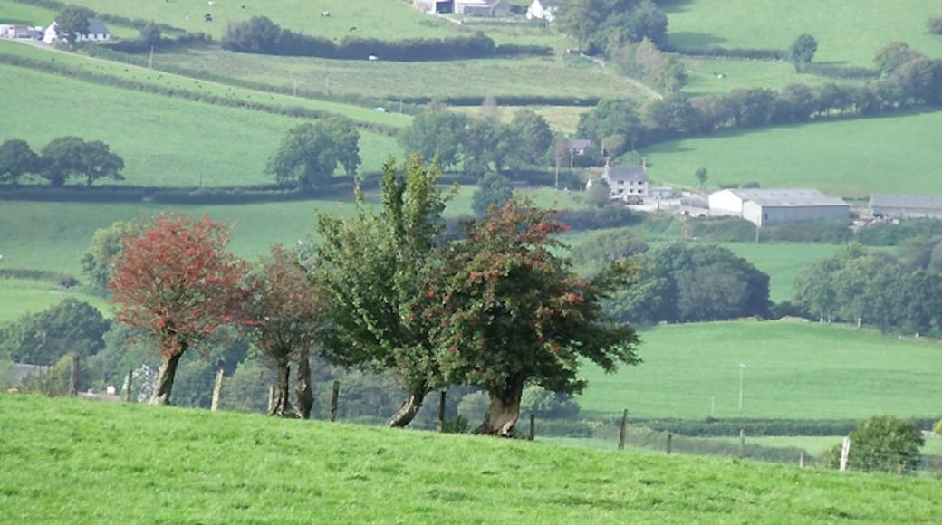 """Photo """"Lampeter"""" by Roger Kidd (CC BY-SA) / Cropped from original"""