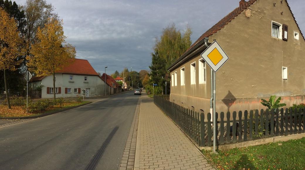 "Foto ""Schwanebeck"" von VManteuffel (page does not exist) (CC BY-SA)/zugeschnittenes Original"
