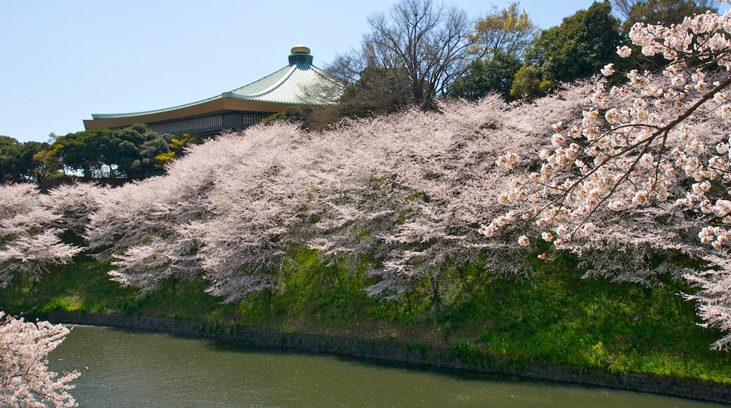 """ภาพ """"นิปปอน บุโดกัง"""" โดย 射場本健彦(ibamoto takehiko) (CC BY-SA) / ตัดภาพจากขนาดต้นฉบับ"""