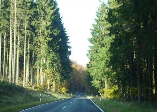 Dedenbach, Allemagne
