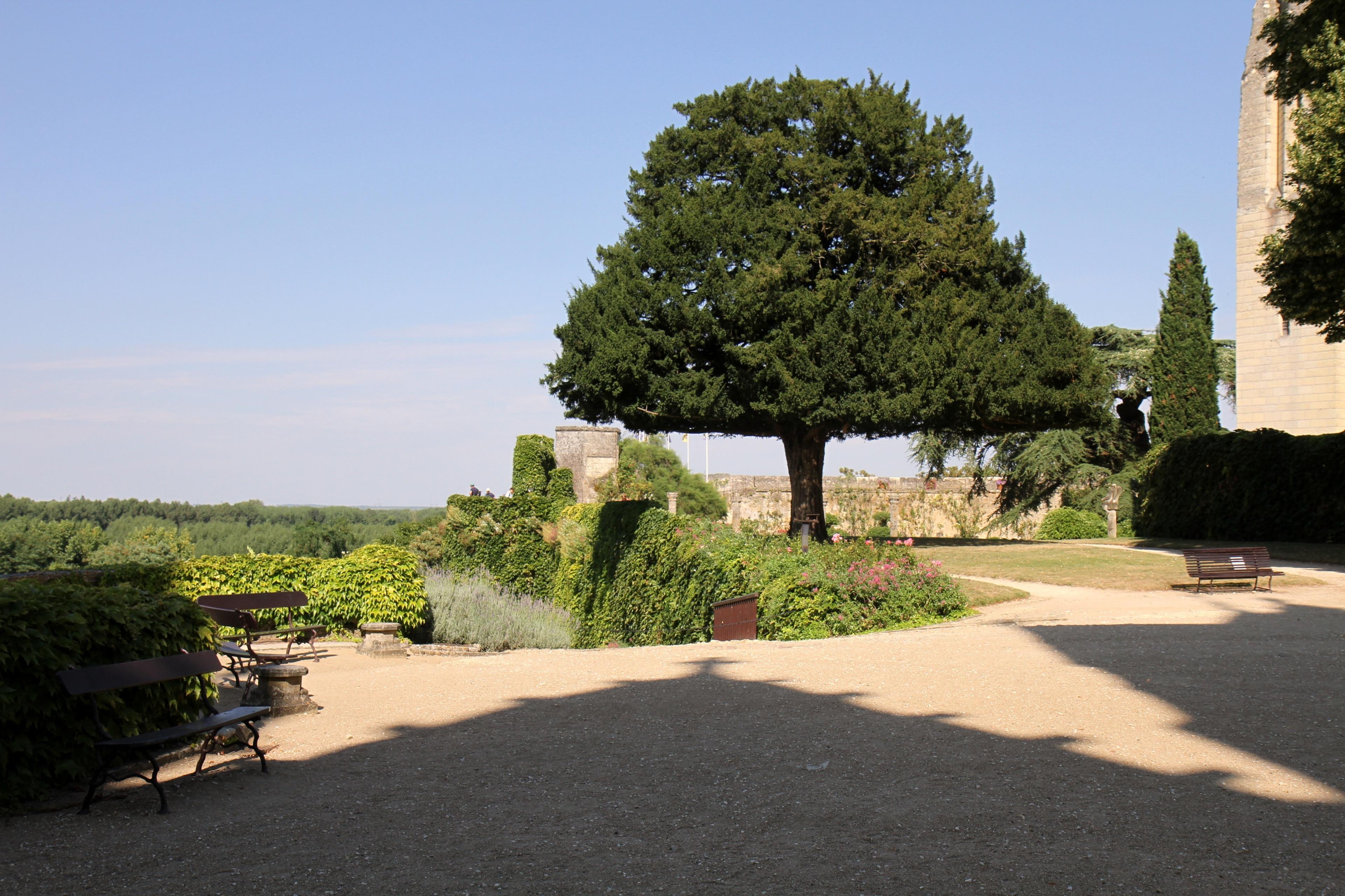 Chateau de Montreuil-Bellay, Montreuil-Bellay, Maine-et-Loire, France
