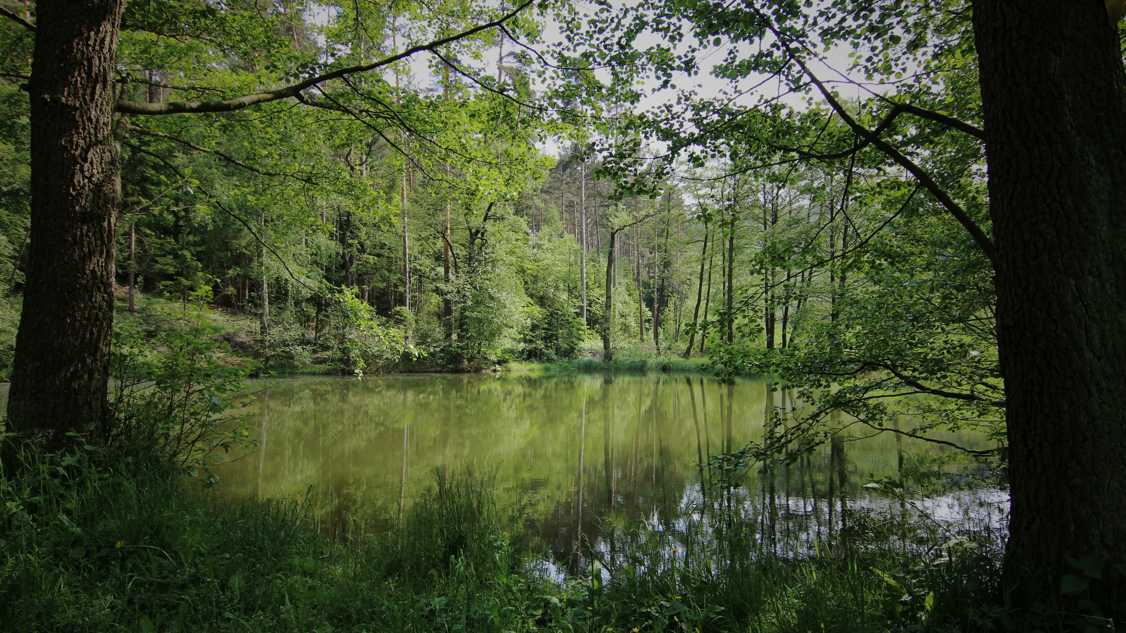 Geschwenda, Geratal, Thuringia, Germany