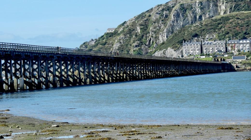 "Photo ""Barmouth Bridge"" by Tanya Dedyukhina (CC BY) / Cropped from original"