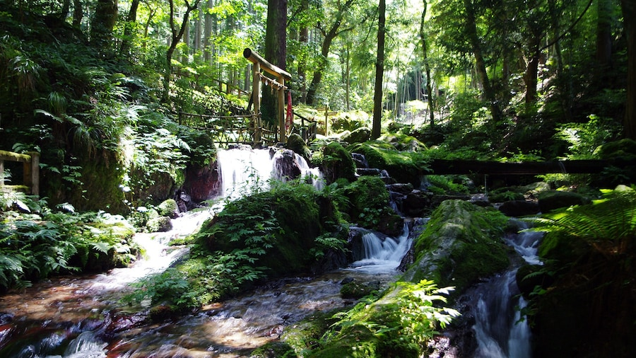 "Photo ""uriwarinotaki, falls in Wakasa, Fukui, Japan"" by Kumamushi (Creative Commons Attribution-Share Alike 3.0) / Cropped from original"