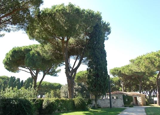 波美吉亞, 意大利