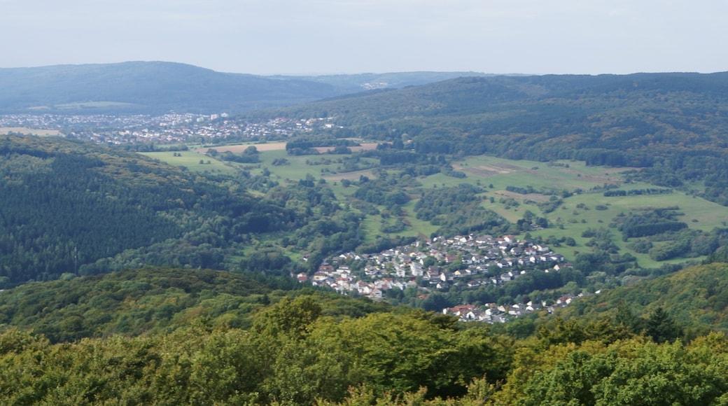 """Foto """"Kelkheim"""" von FkMohr (CC BY-SA)/zugeschnittenes Original"""