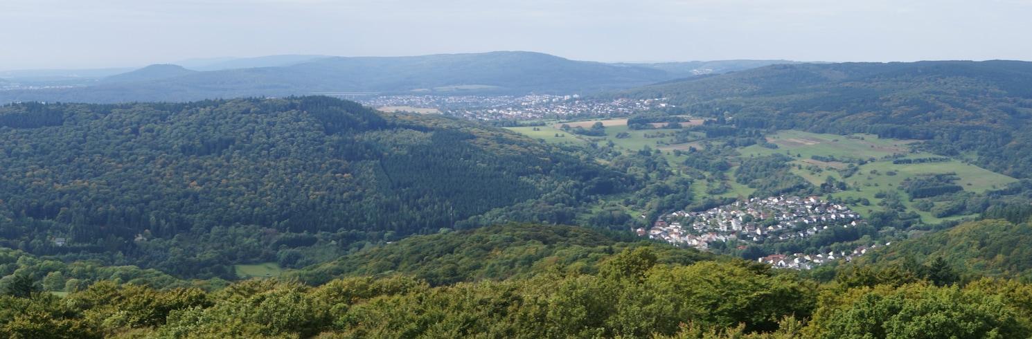 Kelkheim, Duitsland