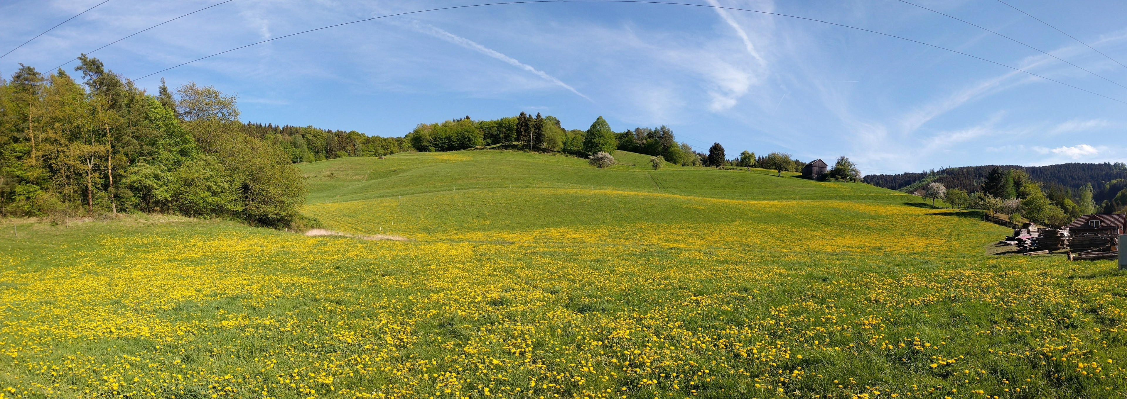 Saalfeld-Rudolstadt District, Thuringia, Germany