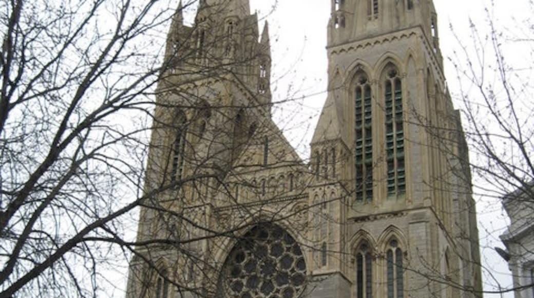 «Cathédrale de Truro», photo de Richard Rogerson (CC BY-SA) / rognée de l'originale