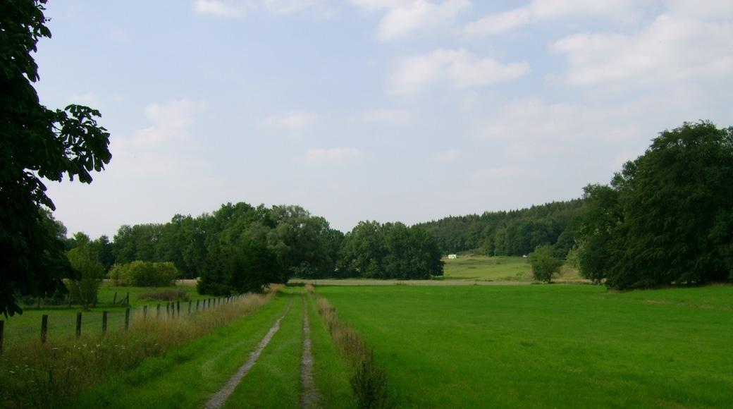 Foto 'Lengerich' van C. Rüger (CC BY) / bijgesneden versie van origineel