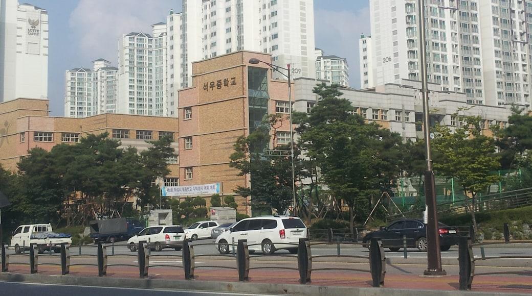 """Foto """"Dongtan"""" de -revi (CC BY) / Recortada do original"""