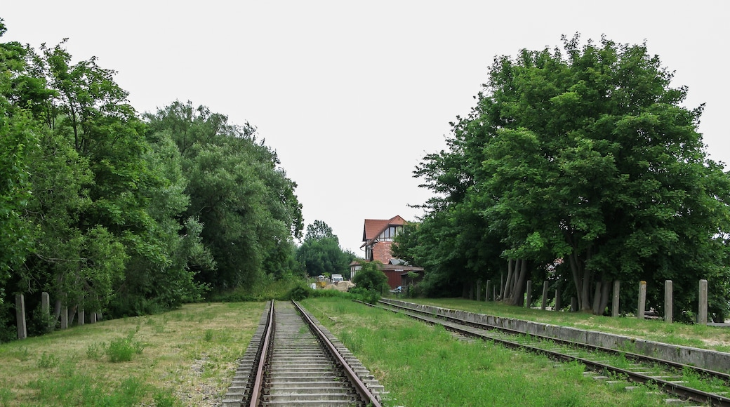 """Photo """"Usedom"""" by Dietmar Rabich (CC BY-SA) / Cropped from original"""