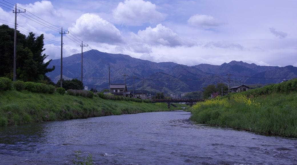 "Photo ""Atsugi"" by SYM50cc EMR (CC BY) / Cropped from original"