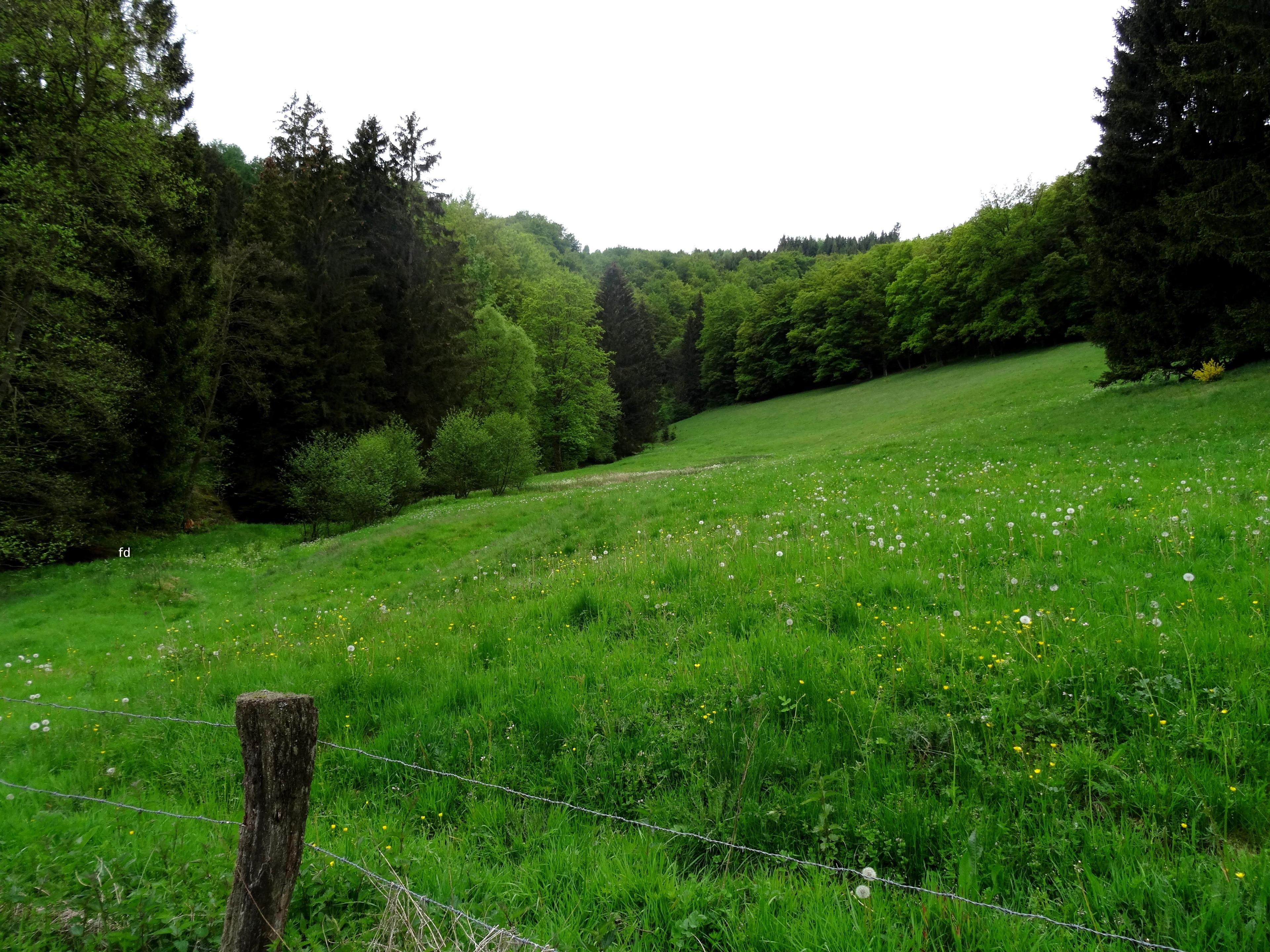 Elpe, Nordrhein-Westfalen, Deutschland