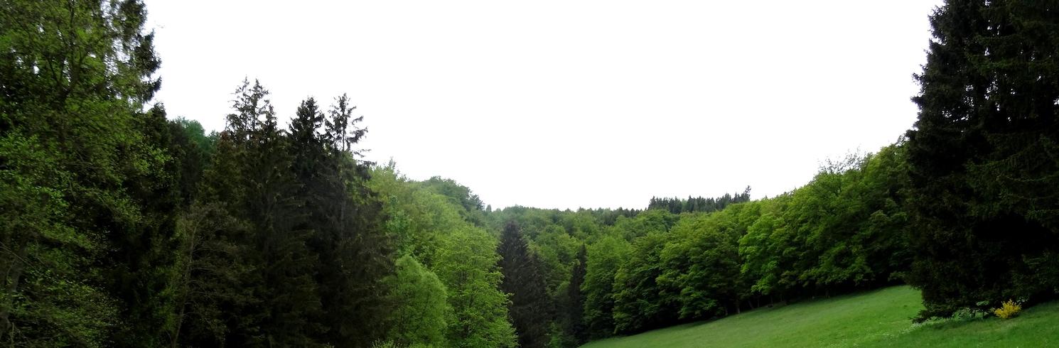 Elpe, Germany