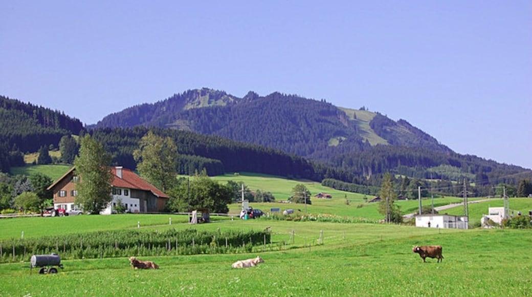 "Foto ""Nesselwang"" von Ulrich Meier on geo.hlipp.de (CC BY-SA)/zugeschnittenes Original"