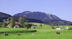 Nesselwang