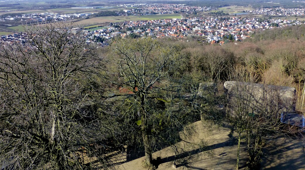 """Photo """"Pfungstadt"""" by Muck50 (CC BY-SA) / Cropped from original"""