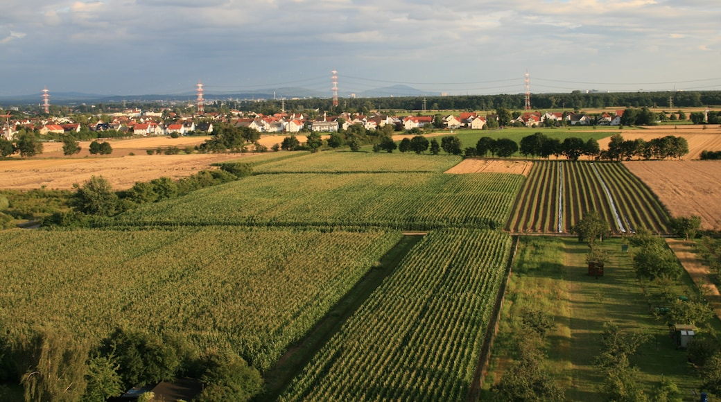 """Photo """"Erzhausen"""" by PS-2507 (CC BY-SA) / Cropped from original"""