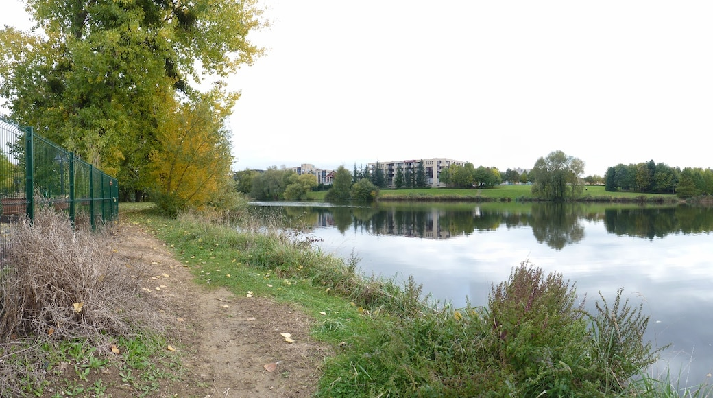 """Photo """"Torcy"""" by Romain.D.C (CC BY) / Cropped from original"""