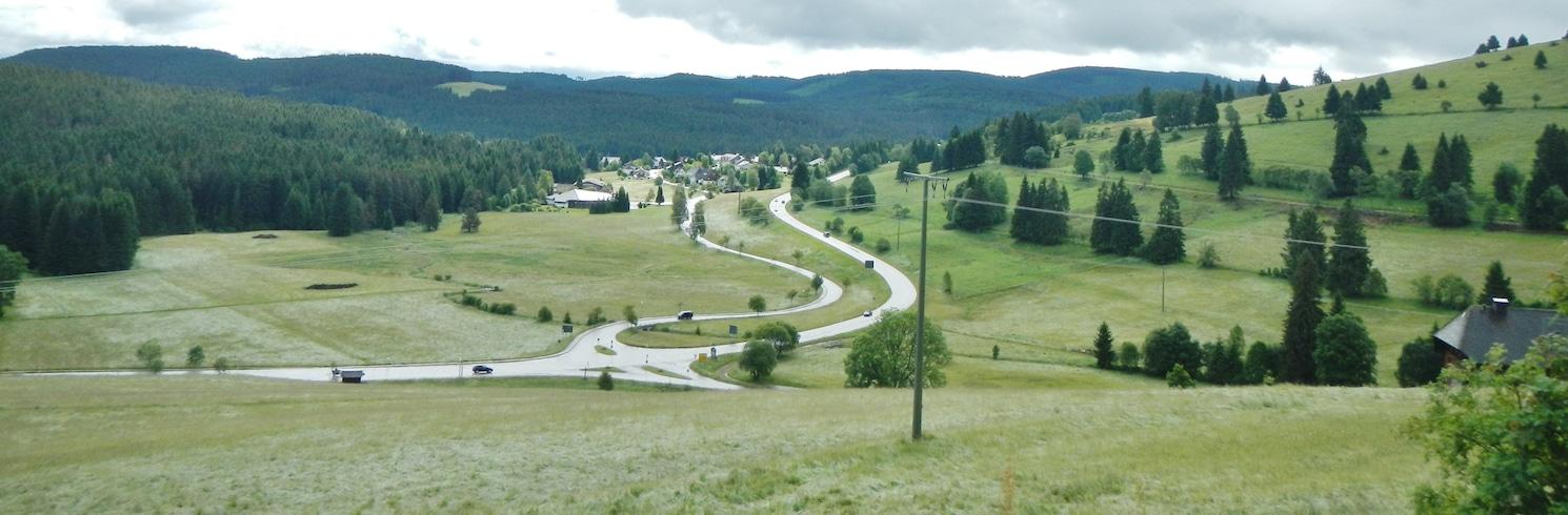 Neuglashütten, Niemcy