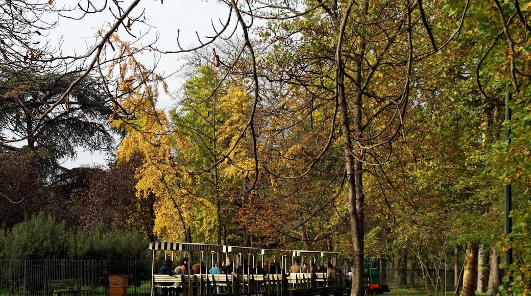 «Neuilly-sur-Seine», photo de besopha (CC BY-SA) / rognée de l'originale