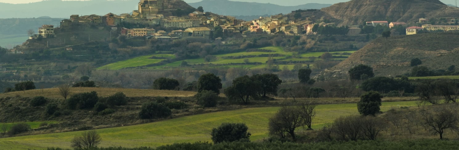 La Sotonera, Spanje