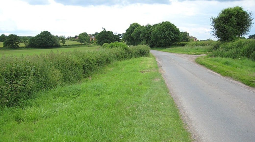 """Photo """"Newent"""" by Pauline Eccles (CC BY-SA) / Cropped from original"""