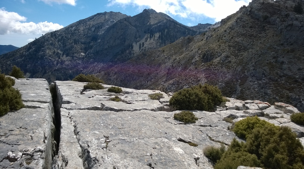 """Photo """"Sierra de las Nieves"""" by Fdonatoledo (page does not exist) (CC BY-SA) / Cropped from original"""
