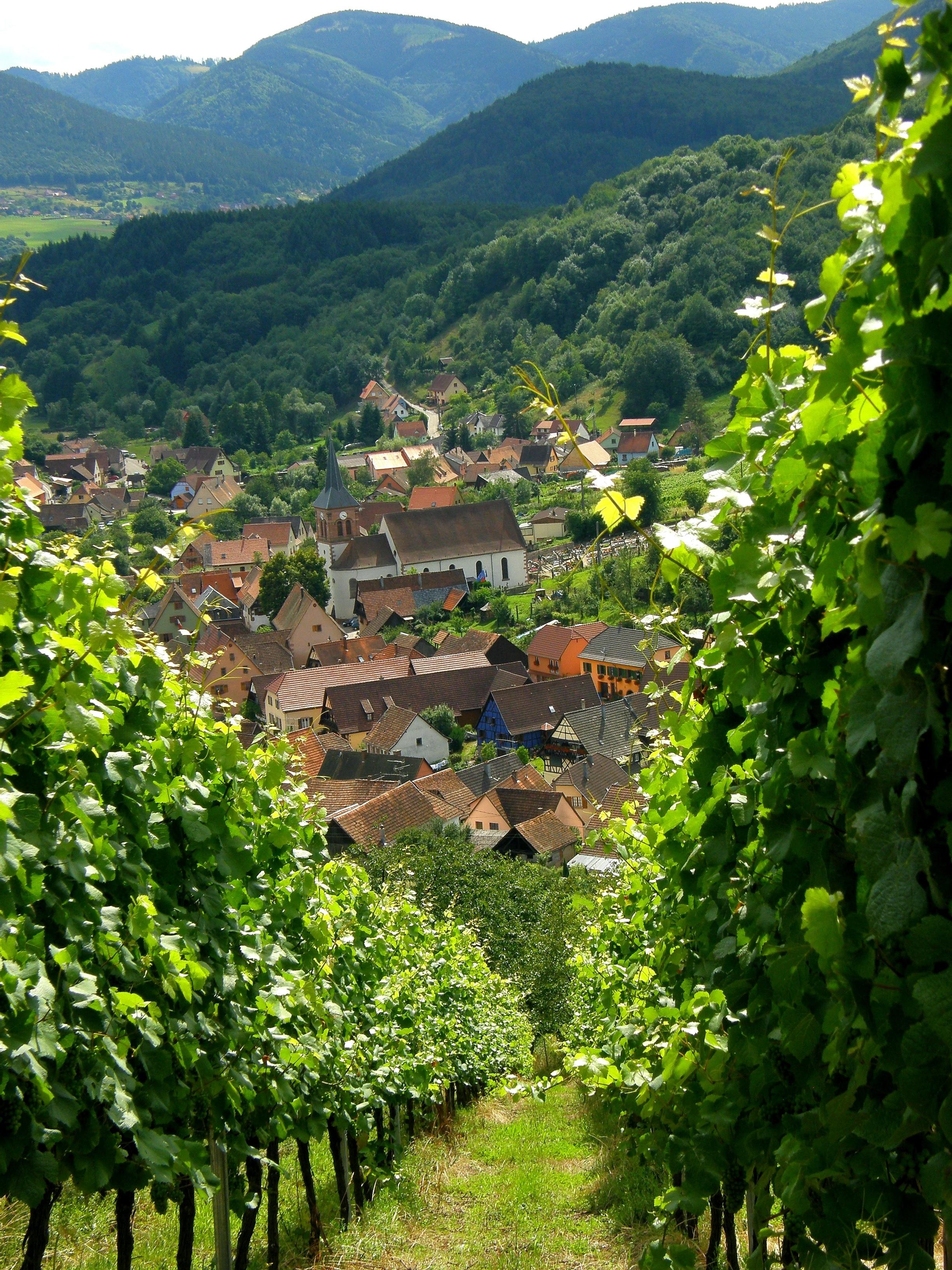 Albe, Bas-Rhin, France