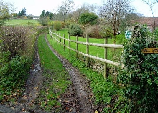 Chardstock, Storbritannien